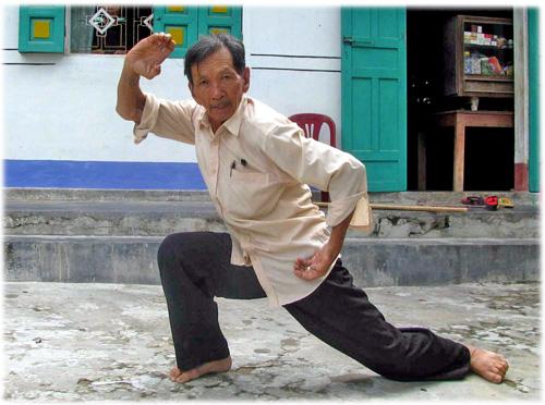 Võ sư Trương Văn Vịnh múa quyền - Ảnh: Hoàng Trọng
