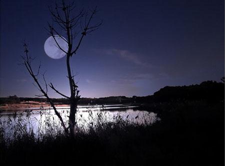 1735073737-kh-moonlight-09-2